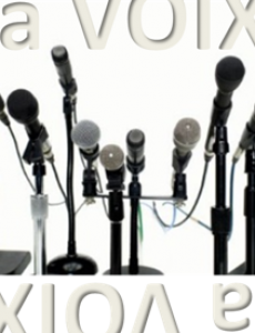 (juin 2015) La Voix, outil du coach.
